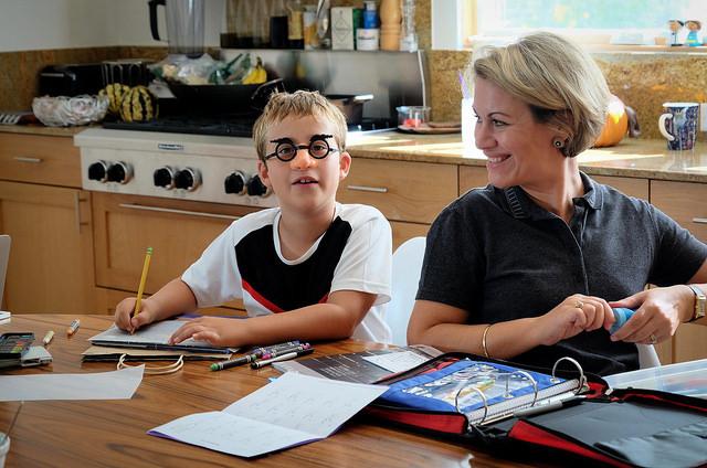 Les devoirs sont indispensables. Mais ils peuvent être agréables. Crédit photo : Flickr : Lars Plougmann